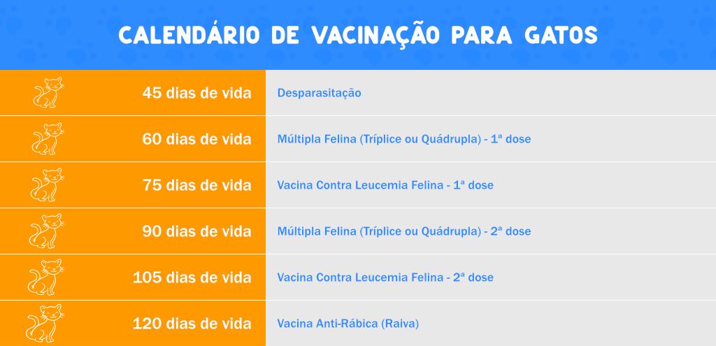 Calendário de Vacinação para gatos